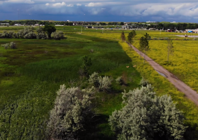 Orchard Meadows Open Space